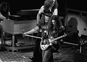 Concert Images Metal Prints - Lynyrd Skynyrd Rock Winterland Metal Print by Ben Upham