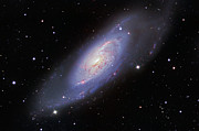 M106 Posters - M106 Spiral Galaxy Poster by Ken Crawford