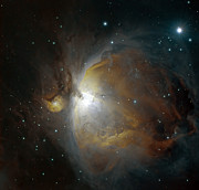 Stellar Photos - M42 Nebula In Orion by Filipe Alves