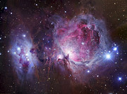 Interstellar Clouds Posters - M42, The Orion Nebula Top, And Ngc Poster by Robert Gendler