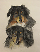 Dogs Drawings - Mac and Mini by John Stuart Webbstock