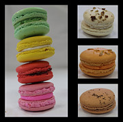 French Photo Originals - Macarons by Abi Grace Bartlett