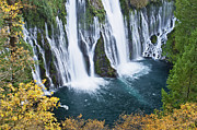 Macarthur Prints - MacArthur-Burney Falls in Autumn Print by Greg Nyquist