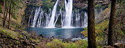Macarthur Framed Prints - MacArthur-Burney Falls Panorama Framed Print by Greg Nyquist