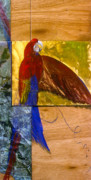 Macaw Mixed Media - Macaw by Dayton Claudio
