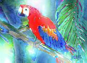 Tropical Mixed Media Framed Prints - Macaw II Framed Print by Arline Wagner