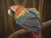 Jungle Pastels Prints - Macaw in  the Jungle Print by Julie Brugh Riffey
