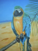 Macaw Mixed Media - Macaw on a Limb by Thomas J Herring