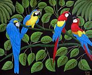 Tropical Artwork By Frederic Kohli - Macaws by Frederic Kohli