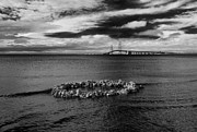 Mackinac Bridge Prints - Mackinac Bridge - Infrared Print by Larry Carr