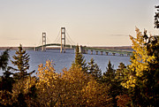 Upper Peninsulas Framed Prints - Mackinaw City Bridge Michigan Framed Print by Mark Duffy