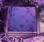 Processor Prints - Macrophotograph Of An Intel Computer Microchip Print by Laguna Design
