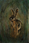 March Hare Drawings - Mad March Hare by Lynn Hughes
