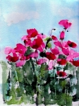 Flowers Field Prints - Maddys Poppies Print by Anne Duke