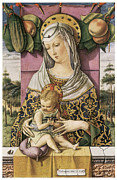 Religious Art Painting Posters - Madonna and Child Poster by Carlo Crivelli