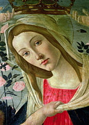 Woman And Child Posters - Madonna and Child Crowned by Angels Poster by Sandro Botticelli