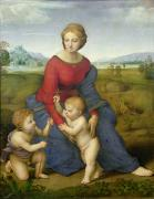 Virgin Mary Paintings - Madonna in the Meadow by Raphael