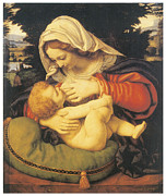 Virgin Mary Paintings - Madonna with the Green Cushion by Andrea Solari
