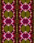 Abstract Digital Art Paintings - Magenta Crystal Pattern by Amy Vangsgard