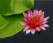Original Oil Paintings - Magenta Lily by Jason M Silverman