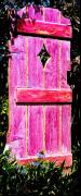 Gate Sculpture Posters - Magenta Painted Door in Garden  Poster by Asha Carolyn Young and Daniel Furon