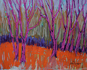 All - Magenta Trees by Jane Wilcoxson
