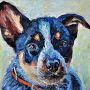 Heeler Paintings - Maggie Mae by Li Newton