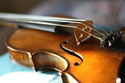 Musical Photos - Magginis Violin With Beautiful Sound by Mayumi Hashi