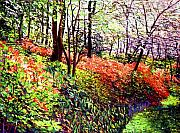 Flowers Impressionist Paintings - Magic Flower Forest by David Lloyd Glover