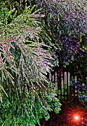 Garden Digital Art Metal Prints - Magic in the Garden Metal Print by Gwyn Newcombe