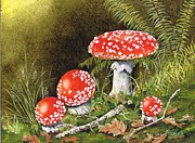 Forest Floor Painting Posters - Magical Mushrooms Poster by Val Stokes