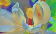 Deborah Benoit - Magnolia Abstract