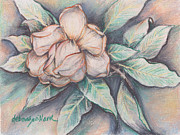 Botanical Pastels Originals - Magnolia Blossom in Pastel by Deborah Willard