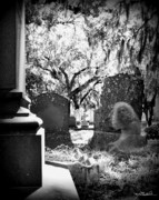 D5000 Prints - Magnolia Cemetery 75 Print by Melissa Wyatt