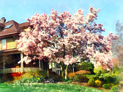 Flowering Tree Posters - Magnolia Near Green House Poster by Susan Savad