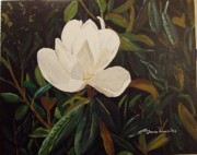 Arkansas Paintings - Magnolia by Sharon  Gonzalez