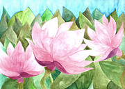 Water Colors Painting Originals - Magnolias by Sue Gardiner