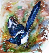 Magpies Paintings - Magpie by Trudi Doyle
