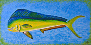 Deepsea Paintings - Mahi Mahi Dolphin Fish by Susan Cliett
