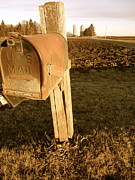 Mail Box Prints - Mail Box Print by Jacqueline Athmann