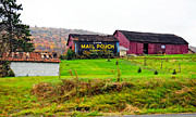 Pa Barns Prints - Mail Pouch Print by Steve Harrington