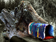 Paint Splash Photos - Mailbox on Bainbridge Island by Wayne King
