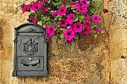 Silvia Ganora Metal Prints - Mailbox with petunias Metal Print by Silvia Ganora