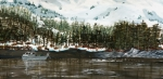Salmon Fishing Paintings - Main Bay - framed by Will Tiedeman