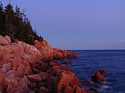 Seacoast Framed Prints - Maine Acadia NP  Framed Print by Juergen Roth