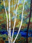 Birch Trees Paintings - Maine Birch Stream by Laura Tasheiko
