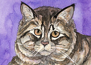 Watercolor Cat Paintings - Maine Coon Cat by Cherilynn Wood