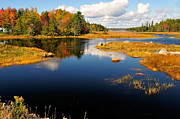 Clear Fall Day Posters - Maine Waterway Poster by Betty LaRue