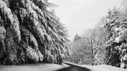 Christy Bruna Art - Maine Winter Backroad by Christy Bruna