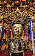 Valuable Prints - Maitreya Statue - Jokhang Temple Tibet Print by Craig Lovell